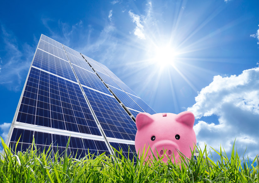 Solar Purchase VS Solar Lease: What Option Is Best For Your Business?